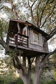 Cool Tree Houses Best 25 Treehouse Ideas Ideas On Pinterest Treehouses
