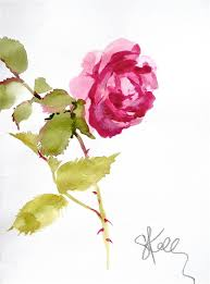 Picture Of Roses Flowers - best 25 watercolor rose ideas only on pinterest painting