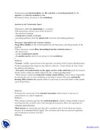 Brainstem Mass Brain Stem Human Body Anatomy Lecture Notes