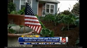 Vegetable Garden Front Yard by Orlando Officials End Crackdown On Front Yard Vegetable Gardens