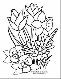 simple flower coloring pages clipart best within coloring pages in