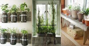 Urban Herb Garden Ideas - 6 indoor gardening ideas urban cultivator