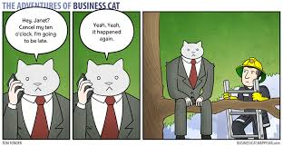 Buisness Cat Meme - how your office would look if your boss was a cat bored panda