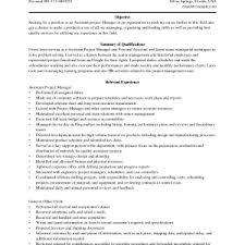 Resume Objective For Real Estate Projects Idea Project Manager Resume Objective 16 Real Estate