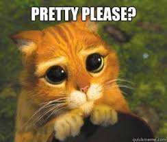 Puppy Eyes Meme - pretty please cat meme please best of the funny meme
