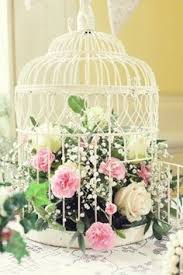 fleurs my just roses pinterest shabby bird cages and