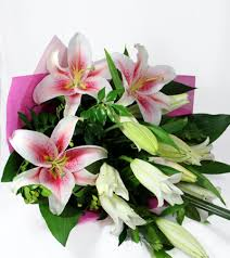 pink lilies pink lilies luxury flowers india