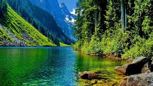 lakes cool lake mountain nature forest fun wallpapers for hd 16 9