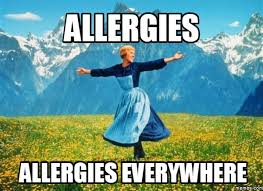19 struggles anyone with allergies knows too well
