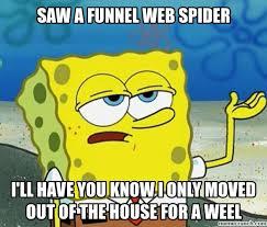 I Saw A Spider Meme - a funnel web spider