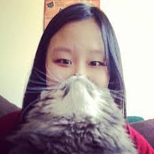 Cat Beard Meme - image 546122 cat beards know your meme