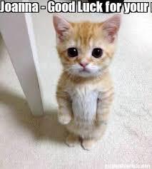 Good Luck Cat Meme - meme creator joanna good luck for your new job meme generator