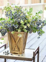 How To Grow A Bulb In A Vase Berries In Containers