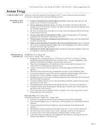resume format sles retail resume format exles of resumes template sales objective
