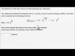 exponential model word problem bacteria growth video khan academy