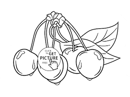 cherries with leaves fruit coloring page for kids fruits coloring