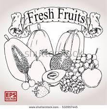 editable fruit fruits line vector editable stock vector 532857445