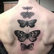 butterfly spine best ideas gallery