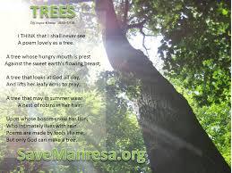 Tree Puns Tree Puns Search School School