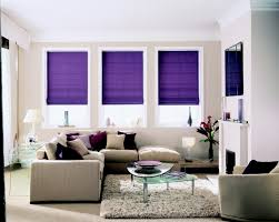 Beautiful Living Rooms Blinds For Living Room Beautiful Pictures Photos Of Remodeling