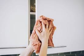 how to clean cupboards after pest how to clean kitchen cabinets