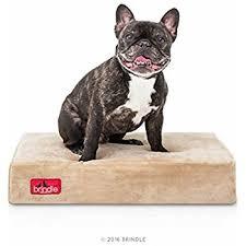 Tempur Pedic Dog Bed Amazon Com Milliard Premium Orthopedic Memory Foam Dog Bed With