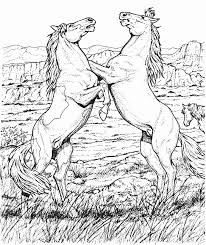 coloring horses horses 2 legs 6