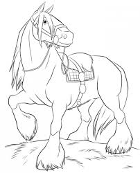 printable horse coloring pages 532 free coloring pages of cute