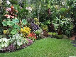 design a tropical garden throughout ideas bombadeagua me