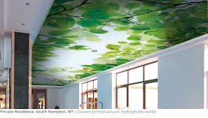 Cost Of Popcorn Ceiling Removal by Popcorn Ceiling Solutions Acoustic Textured Ceiling Removal Repair