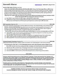 ceo real estate resume sample page 1 resume samples