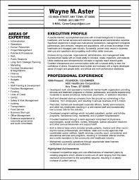 Extensive Resume Sample executive resumes it executive resume example professional