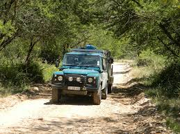 land rover jungle land rover africa magazine take a break in the baviaanskloof