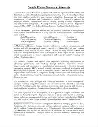 resume summary exles customer service professional statement resume summaries for resumes resume