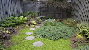 how to design backyard how to design ground cover plants and add seating areas to reduce