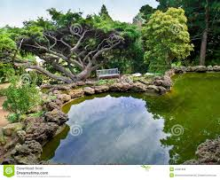 ornamental pond view stock photo image of pine jersey 22851960