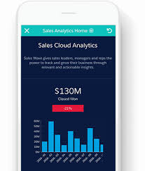 Resume With Picture Sample by Business Intelligence Bi Software Solutions From Analytics Cloud