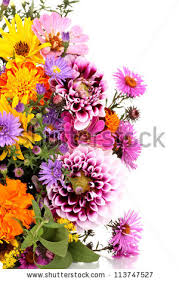 Beautiful Bouquet Of Flowers Flower Bouquet Stock Images Royalty Free Images U0026 Vectors