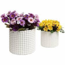 indoor plant pots hub collector