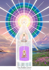 I Am Light Your Buddha Nature Spiritual Identity Divine Nature I Am That I Am