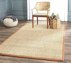 Pottery Barn Rugs Smell 9 12 Jute Rug Large Size Of Coffee Rug Wool Rug That Looks Like