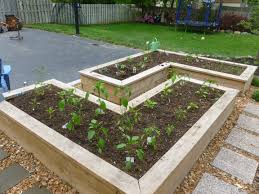 Garden Box Ideas Stupefying Garden Box Ideas With Great Border Yard Pinterest