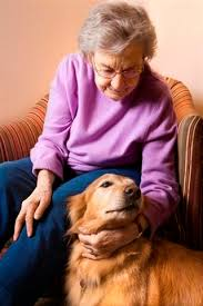 gifts for elderly grandmother 146 best gift ideas for seniors images on gifts