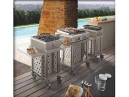 recette cuisine barbecue gaz module open cook 2 feux gaz sur chariot mobile idéal traiteur
