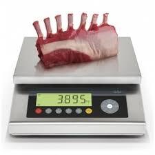 balance de cuisine pro balance de précision tbs pro