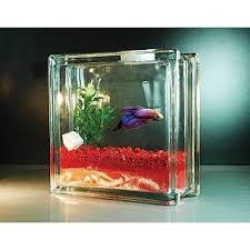 Betta Fish Decorations Best 25 Betta Fish Bowl Ideas On Pinterest Betta Aquarium