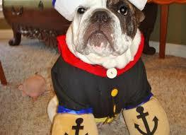 dog costumes for halloween homemade korrectkritterscom