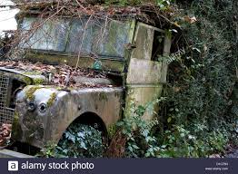 land rover rusty an old british military land rover rots in a hedgerow by the side