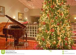tree and piano royalty free stock image image 7440576