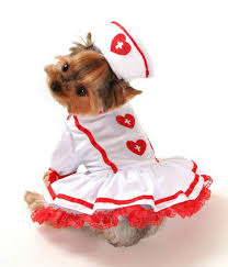 Small Dog Costumes Halloween Small Dog Costumes Halloween Costumes Clothes Small Dogs